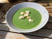 Jarná žihľavová polievka